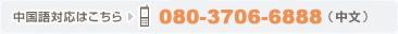 中国語対応はこちら 080-4654-1159(中文・SoftBank)